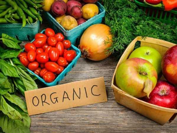 butterkicap planet organics