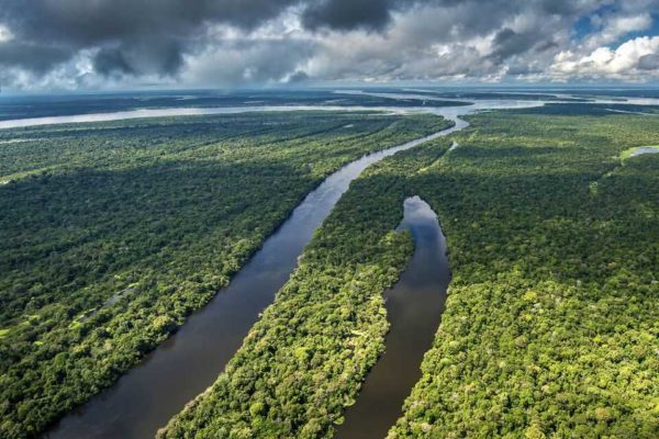reka amazonka teryg