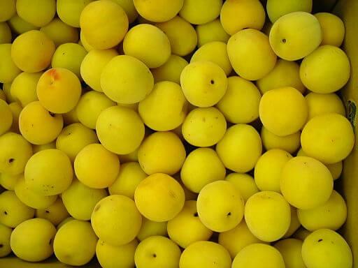 zolotaya sliva frukt