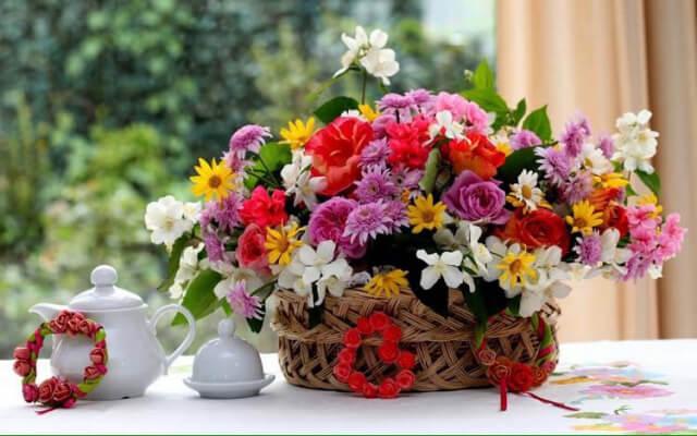 cvery flowers
